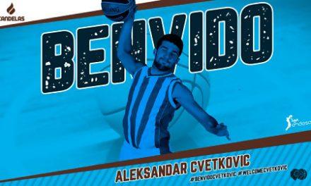El Cafés Candelas incorpora al exterior serbio Aleksandar Cvetkovic