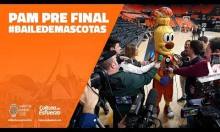 Pam pre Final #BailedeMascotas