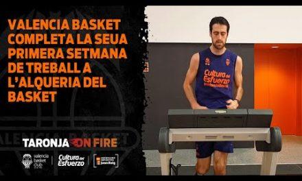 Primera semana de trabajo en L'Alqueria del Basket