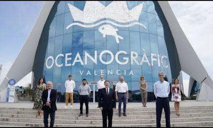 Valencia da la bienvenida a la Fase Final de la Liga Endesa en L'Oceanogràfic